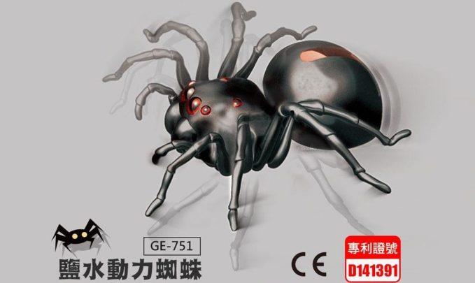 2017蜘蛛