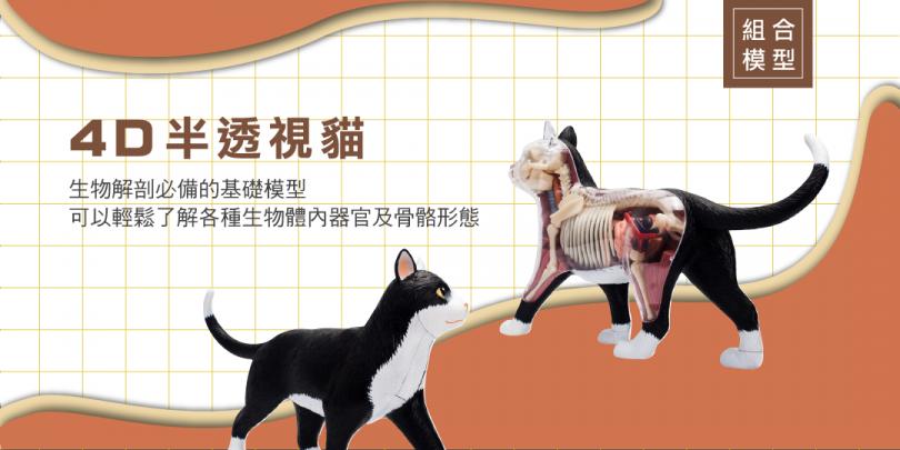 170821_貓拼圖-01