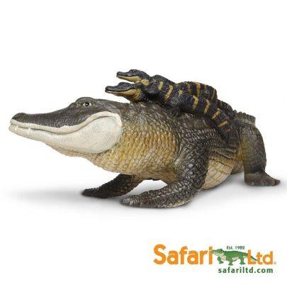 SAFARI動物模型