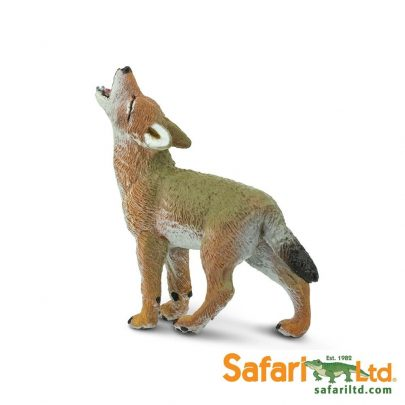 SAFARI動物模型狼