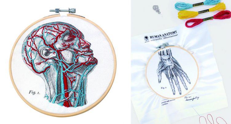 人體血管分布刺繡套組