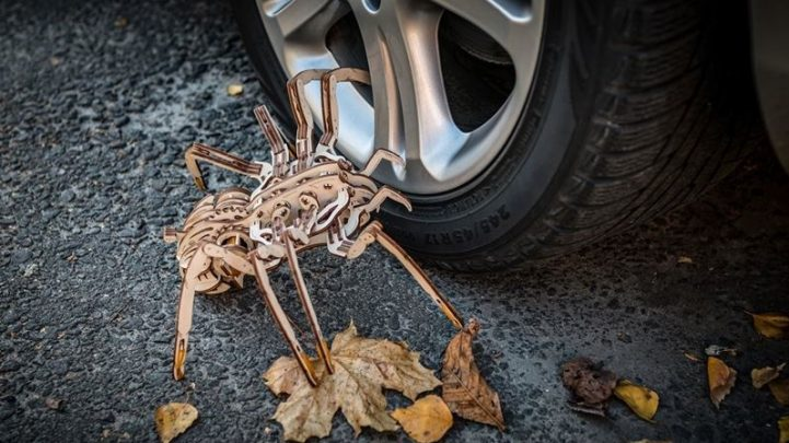 eco-wood-art-spider_2