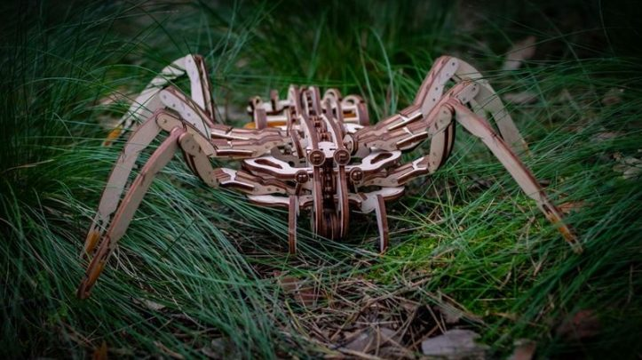 eco-wood-art-spider_4