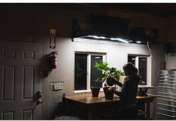 luminoodle-task-led_3