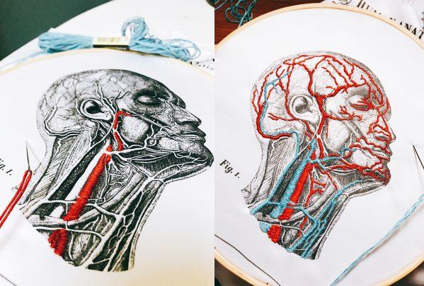 人體血管分布刺繡套組1