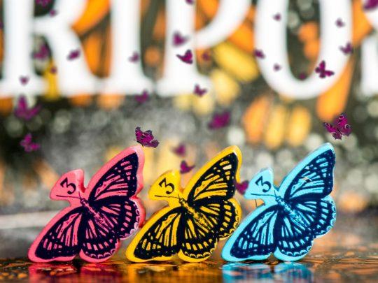 mariposass蝶旅花香_3