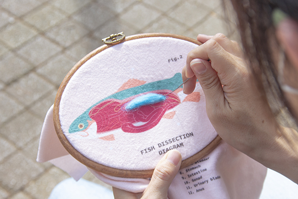 生物解剖羊毛氈刺繡套組_3