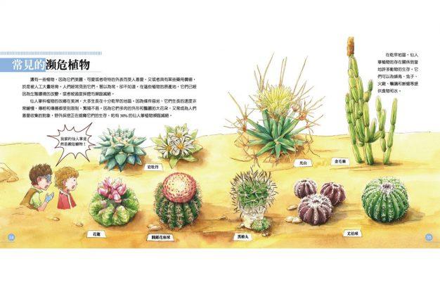 我的第一本植物演化圖鑑—從被子植物稱霸到人與植物共生_12