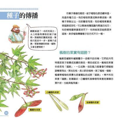 我的第一本植物演化圖鑑—從被子植物稱霸到人與植物共生_3