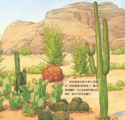 我的第一本植物演化圖鑑—從被子植物稱霸到人與植物共生_8