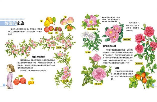 我的第一本植物演化圖鑑—從被子植物稱霸到人與植物共生_9