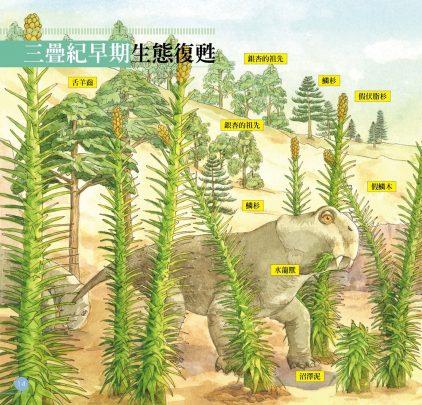 我的第一本植物演化圖鑑-從藻類演化到花的誕生_11