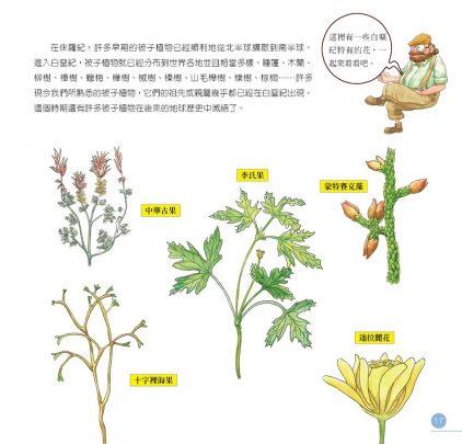 我的第一本植物演化圖鑑-從藻類演化到花的誕生_16