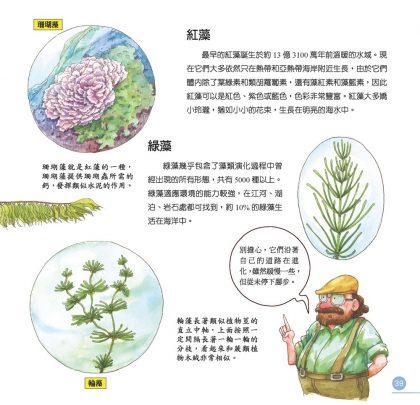 我的第一本植物演化圖鑑-從藻類演化到花的誕生_4