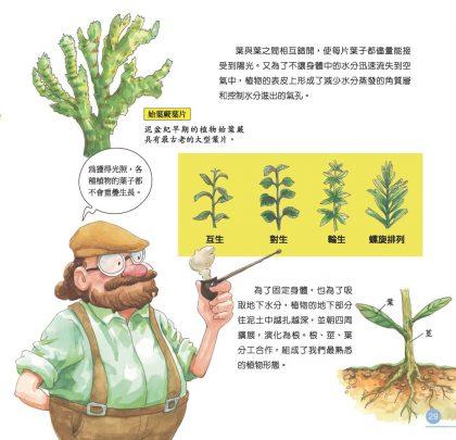 我的第一本植物演化圖鑑-從藻類演化到花的誕生_6