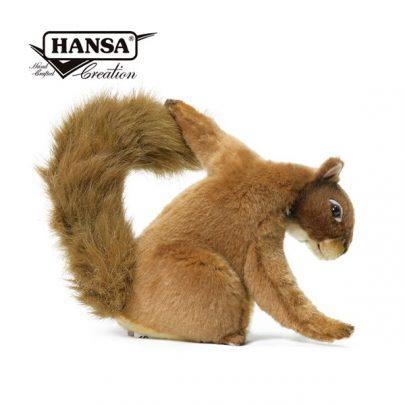 Hansa紅松鼠_600_3