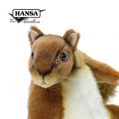 Hansa紅松鼠_600_4