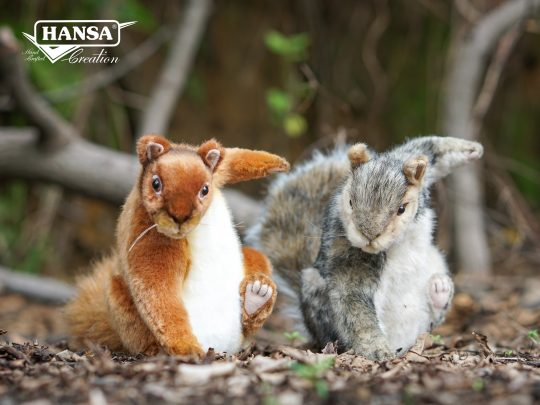 Hansa(紅松鼠+灰松鼠)_1